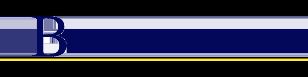 Bartolus.nl